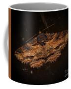 Front Side Of A Moth On A Window Coffee Mug
