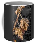 Frosted Flake Coffee Mug