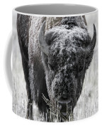 Frosted Over Coffee Mug