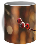 Frosted Rose Hips Coffee Mug