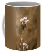 Frosty Flower Remains Coffee Mug