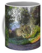 Frosty Morning Near Nant Clwyd, North Wales Coffee Mug