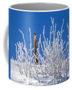 Frozen Fence Post Coffee Mug