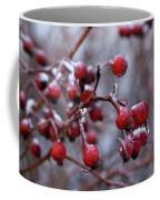 Frozen Fruit Coffee Mug