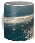 Frozen In Time Coffee Mug