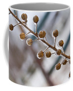 Frozen Seed Capsules In Time Coffee Mug