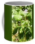 Fruit Of The Mayapple Coffee Mug