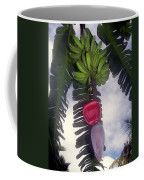 Fruitful Beauty Coffee Mug