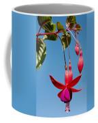 Fuchsia At Pilgrim Place In Claremont-california Coffee Mug