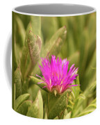 Fuchsia Bloom Coffee Mug