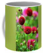 Full Bloom Reds Coffee Mug