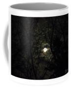 Full Moon In February Coffee Mug