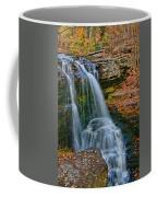 Fulmer Falls - Childs State Park Coffee Mug
