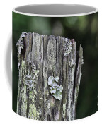 Fungi Green Coffee Mug