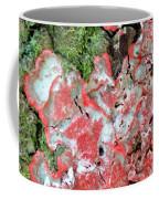 Fungus Amongst Us - Florida Palm Coffee Mug