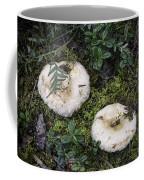 Fungi No 3 Coffee Mug