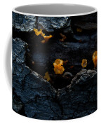 Fungus On Log Coffee Mug