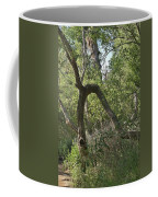 Funky Tree On Trail In Peters Canyon Coffee Mug