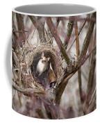 Funny Little Bird Coffee Mug