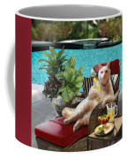 Funny Pet  Vacationing Kitty Coffee Mug