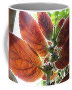 Furry Flora 2 Coffee Mug