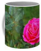 Fuschia Rose Coffee Mug