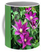 Fushia Clematis Flowers Coffee Mug