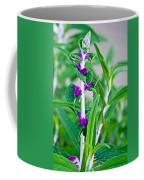 Salvia At Pilgrim Place In Claremont-california  Coffee Mug