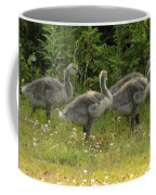Fuzzy Fowlings Coffee Mug