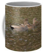 Gadwall Pair Coffee Mug
