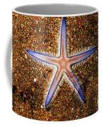 Galapagos Colorful Seastar Coffee Mug