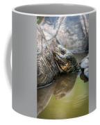 Galapagos Giant Tortoise In Pond Amongst Others Coffee Mug