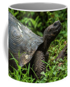 Galapagos Giant Tortoise In Profile In Woods Coffee Mug