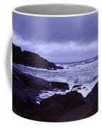 Gale Winds At Nubble Light Coffee Mug