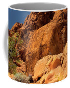 Gambels Quail In Profile Valley Of Fire Coffee Mug
