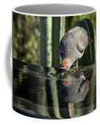 Gambel's Quail Male Coffee Mug