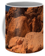 Gambels Quail Valley Of Fire Coffee Mug
