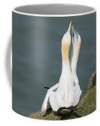 Gannet - Morus Bassanus Coffee Mug
