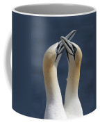Gannets In Love Coffee Mug
