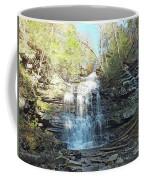 Ganoga Falls 3 - Ricketts Glen Coffee Mug