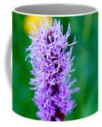 Garden Blooms Coffee Mug