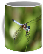 Garden Dragonfly Coffee Mug