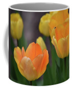 Garden Glory Coffee Mug