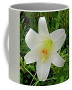 Garden Lily Posterized Background Coffee Mug