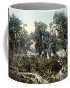 Garden Of Gethsemane Coffee Mug