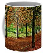 Garden Path, Schloss Biebrich Coffee Mug