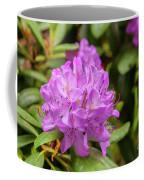 Garden Rhodoendron Plant Coffee Mug