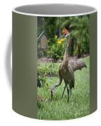 Garden Sandhills Coffee Mug