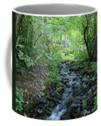 Garden Springs Creek In Spokane Coffee Mug