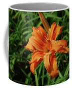 Garden With A Blooming Double Daylily Flowering Coffee Mug